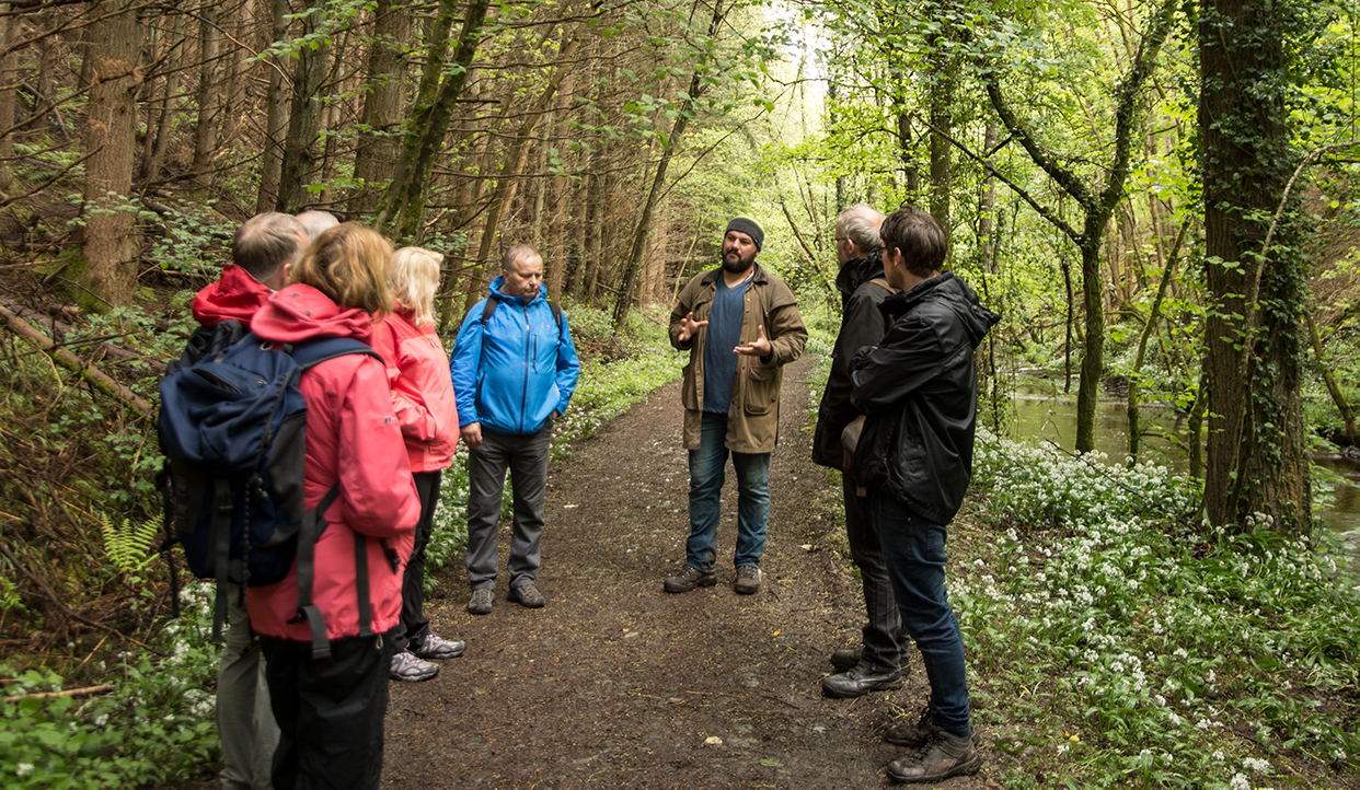 beginners foraging course uk