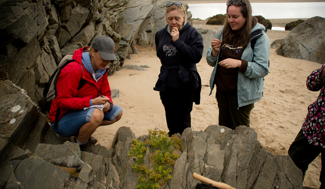 uk coastal foraging course