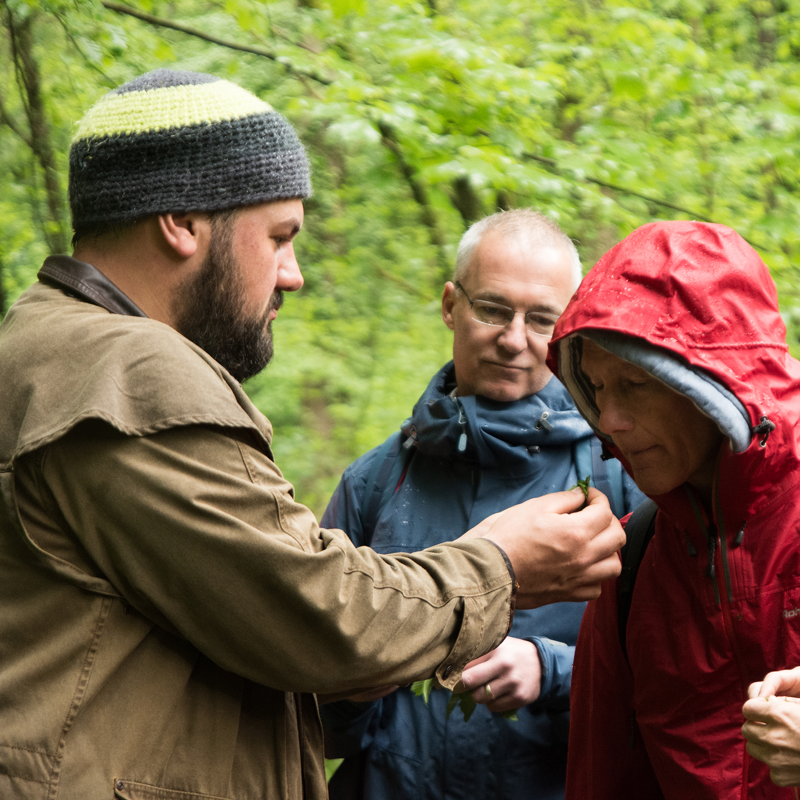 foraging instructor training
