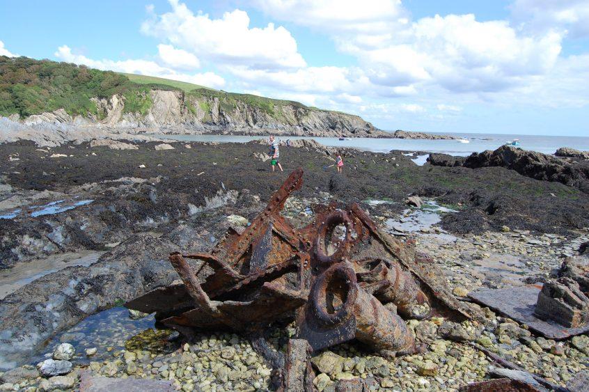 coastal foraging wales